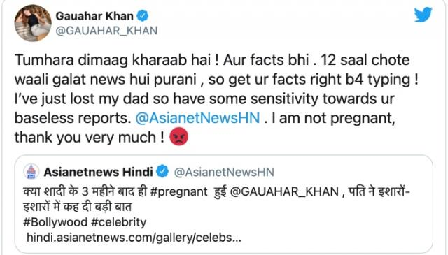 Gauhar Khan Pregnancy Rumour