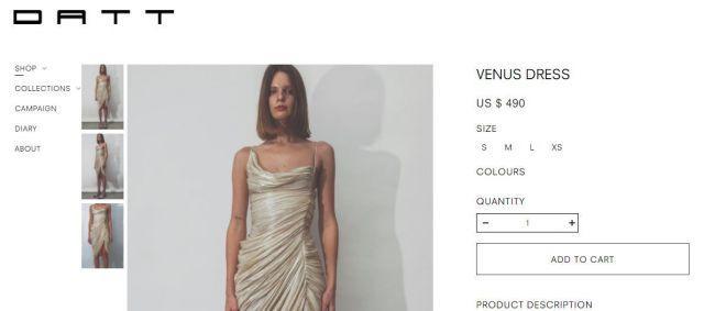 Janhvi Kapoor's expensive dress