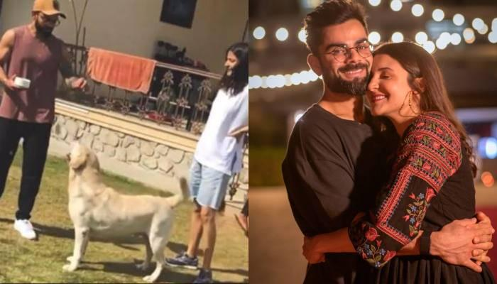 अनुष्का शर्मा को आई पति विराट कोहली संग बिताए गए स्पेशल मोमेंट्स की याद, शेयर किया थ्रोबैक वीडियो