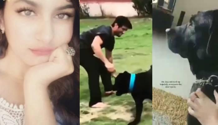 सुशांत की भांजी मल्लिका सिंह ने शेयर किया पालतू डॉगी का भावुक कर देने वाला वीडियो
